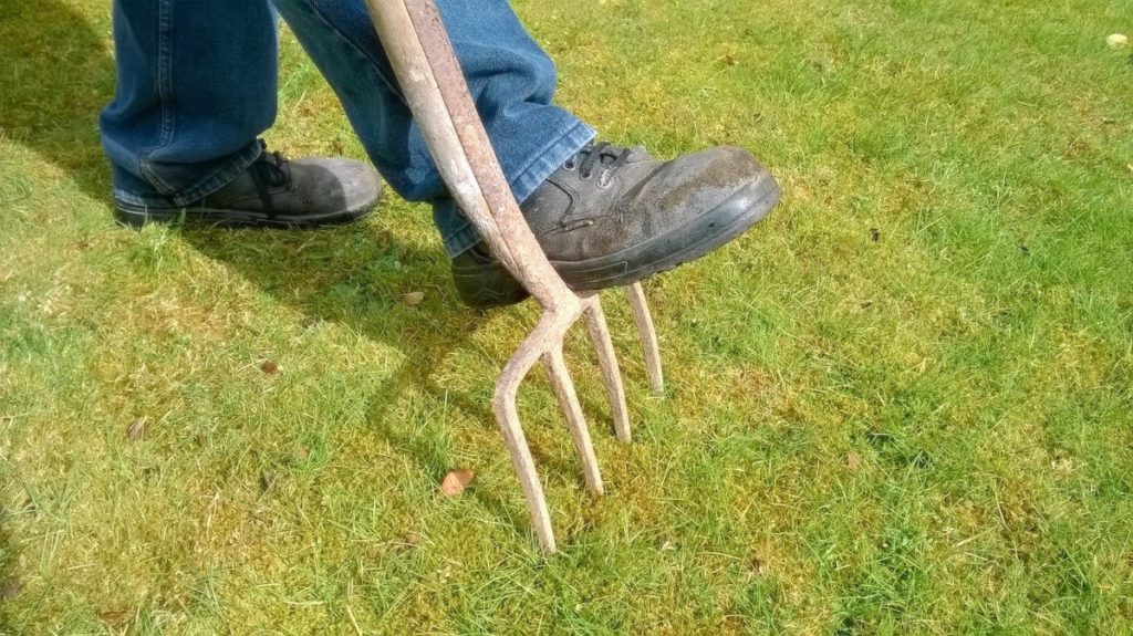 Aerate the lawn to prep your outdoor space